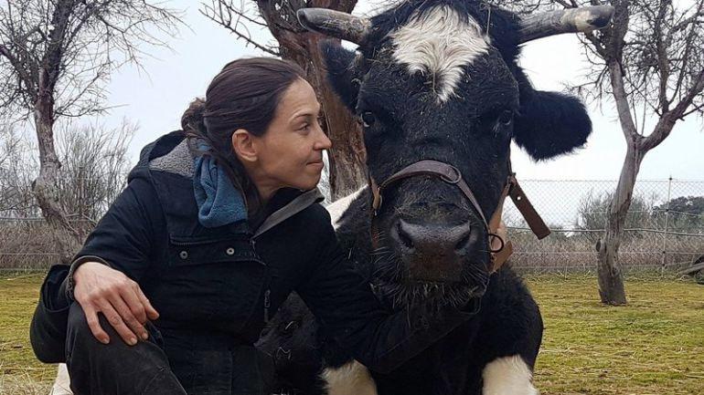 vaca carmen santuario vegan